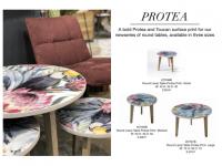Aspect Protea