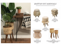 Rattan Occasional