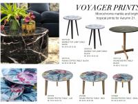 39 - Voyager Prints