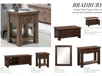 5 - Bradbury